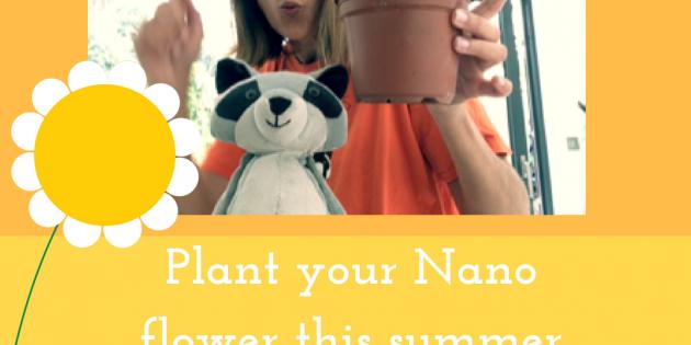 Plant a Nano Flower